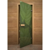 Дверь стеклянная с полноцветным рисунком Листья зелень
